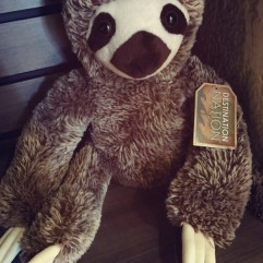 Stuffed Sloth at Indy Zoo