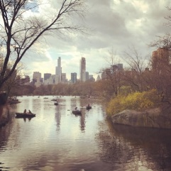 NYC & Central Park